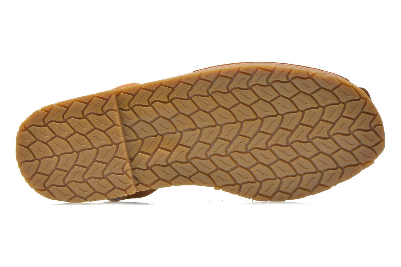 Sandales et nu-pieds Coolway Seilor Marron vue haut