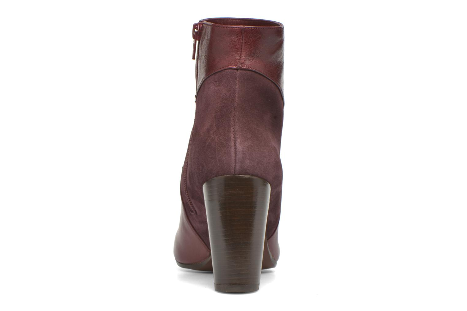 Ankle boots Chie Mihara Flint-C Burgundy view from the right