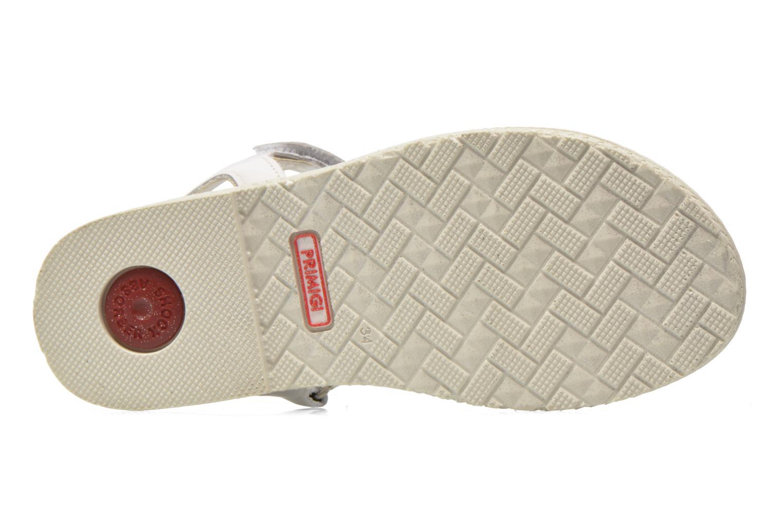Sandales et nu-pieds Primigi Leticia Blanc vue haut