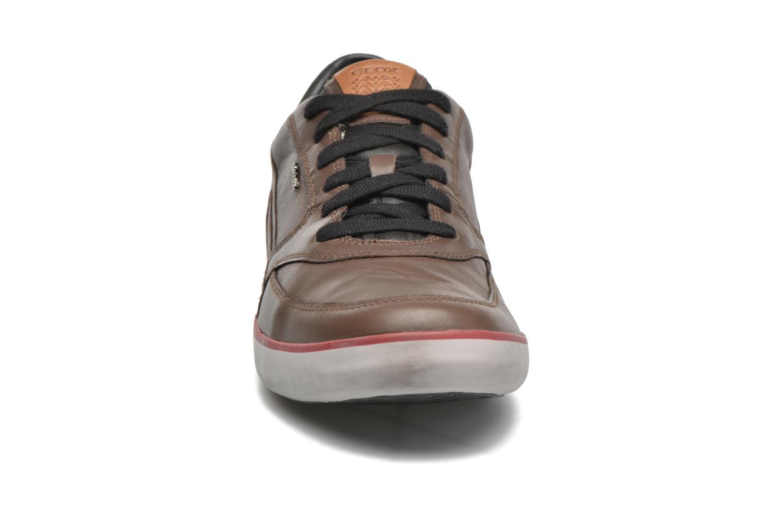 Baskets Geox U Box U44R3A43C Marron vue portées chaussures
