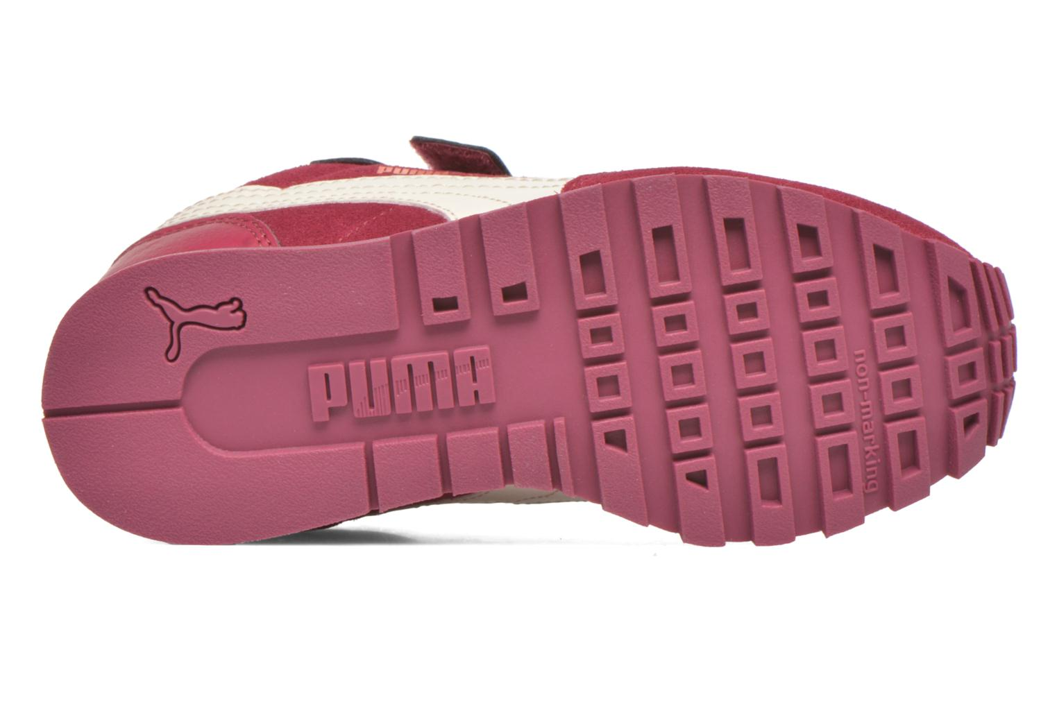 Trainers Puma Inf St Runner Sd V Burgundy view from above