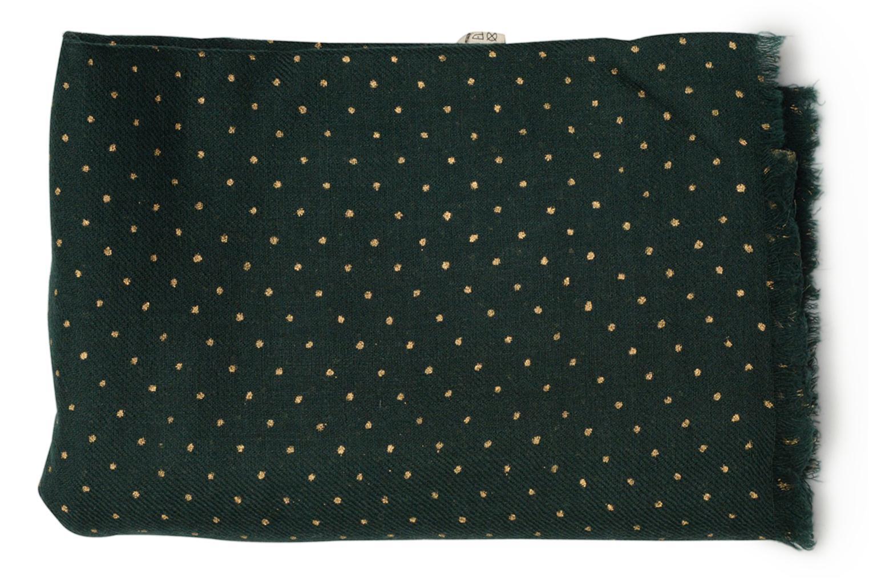 Divers Petite mendigote GINGER Foulard laine 100x200 Vert vue portées chaussures