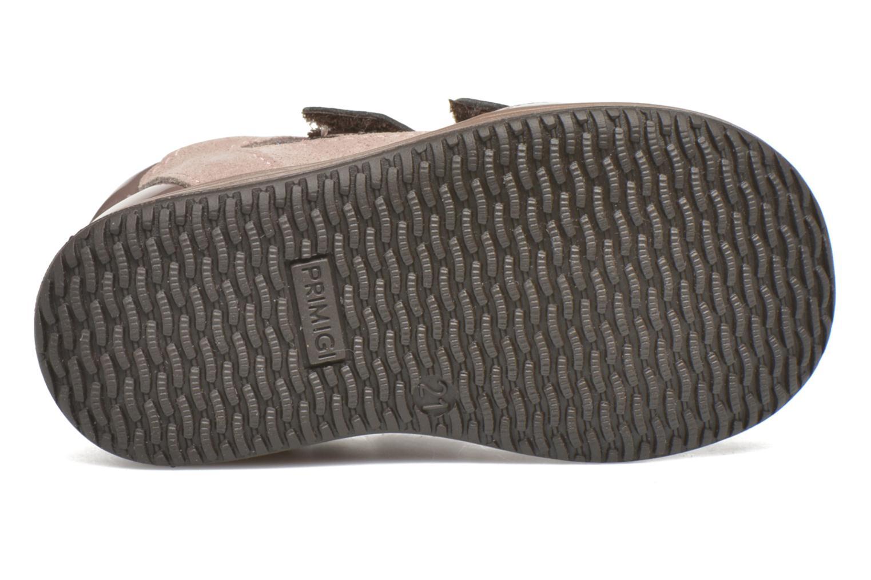 Velcro shoes Primigi Ghigo 7 Brown view from above