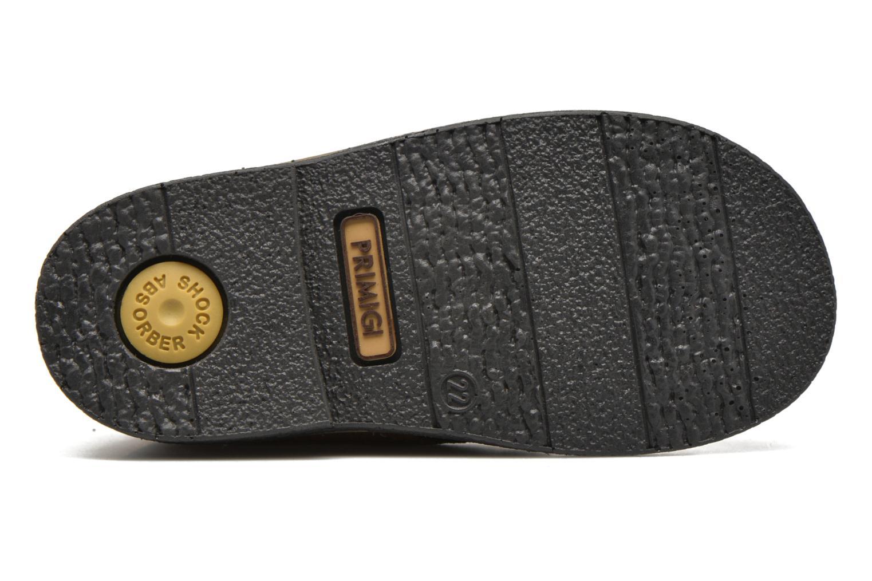 Chaussures à lacets Primigi Zizz Marron vue haut