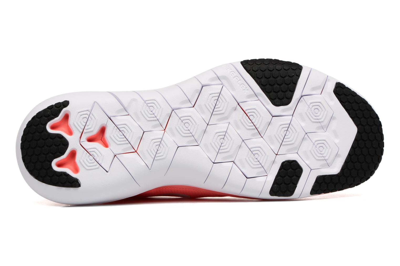Scarpe sportive Nike Wmns Nike Flex Supreme Tr 5 Arancione immagine dall'alto