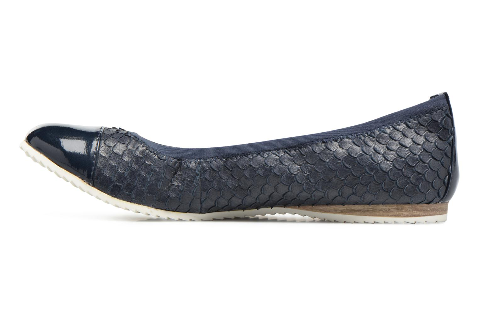 Ancolie Navy