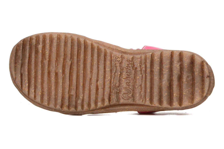 Sandales et nu-pieds Naturino See Rose vue haut