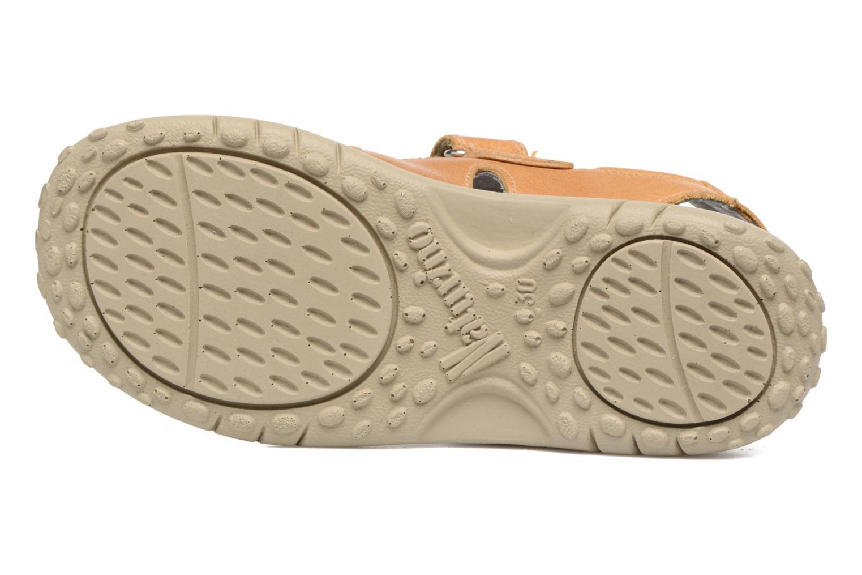 Sandales et nu-pieds Naturino Angelo 5675 Jaune vue haut