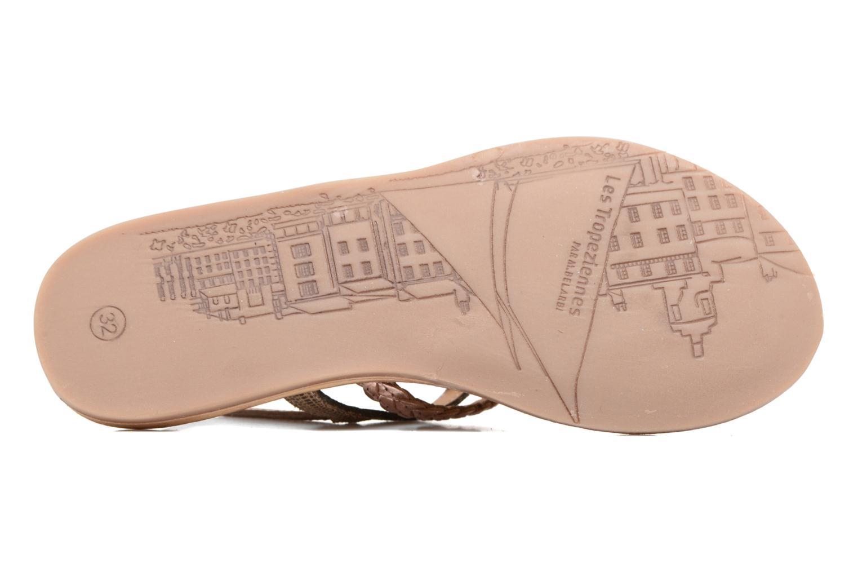 Sandales et nu-pieds Les Tropéziennes par M Belarbi Baraka E Or et bronze vue haut