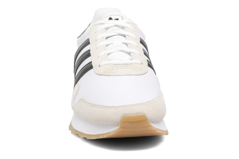 Sneakers Adidas Originals Haven Grå bild av skorna på