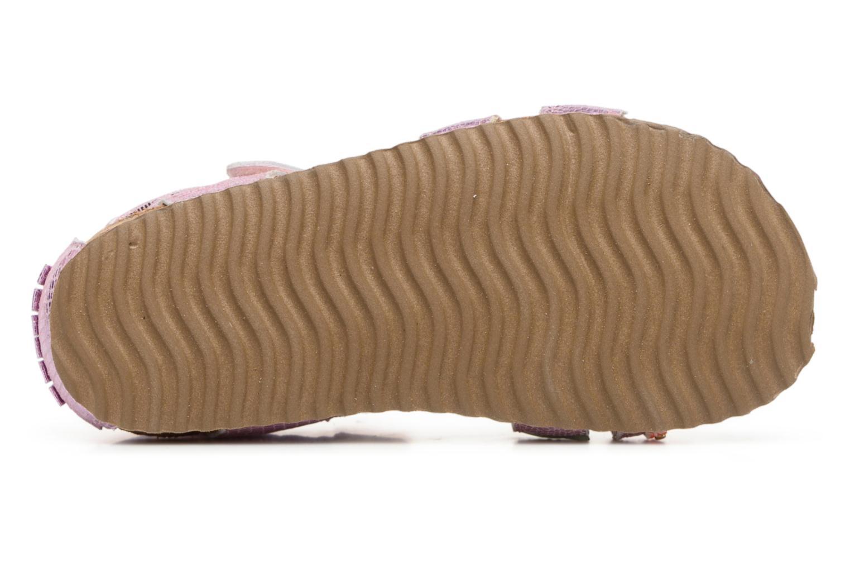 Sandales et nu-pieds Shoesme Sissy Rose vue haut