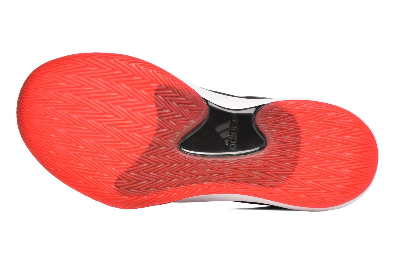 Chaussures de sport Adidas Performance D ROSE DOMINATE IV Noir vue haut