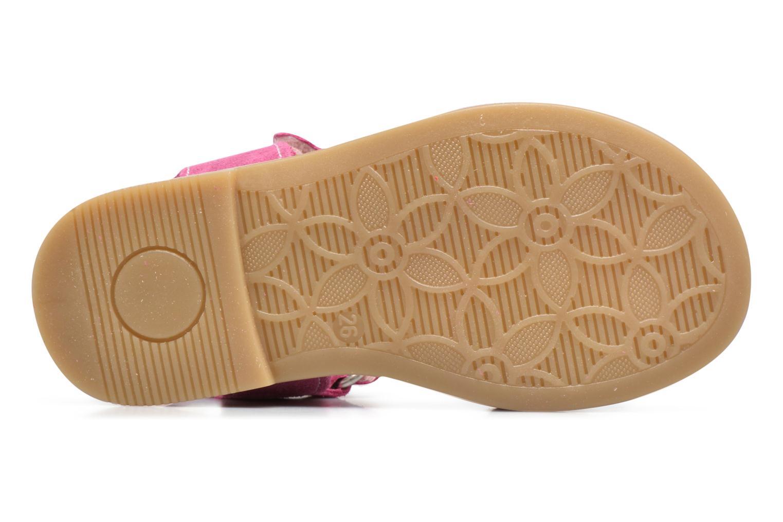 Sandales et nu-pieds Primigi Fiorela Rose vue haut