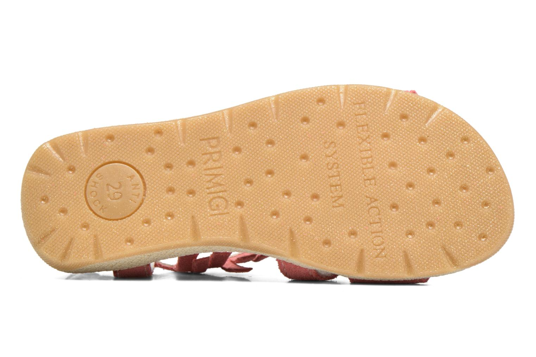 Sandales et nu-pieds Primigi Olivia Rose vue haut