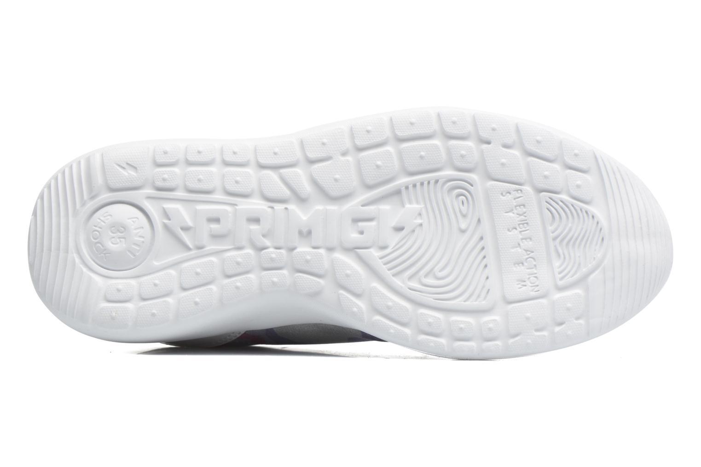 Sneakers Primigi Polo Multicolore immagine dall'alto