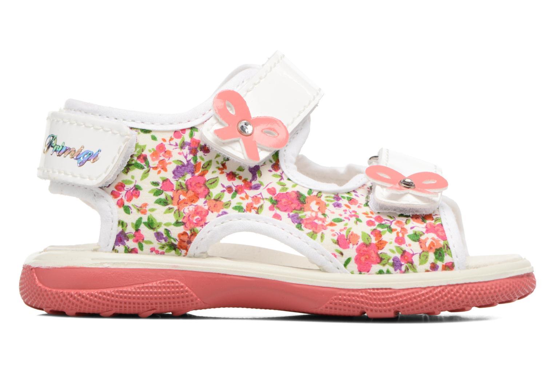 Sandales et nu-pieds Primigi Francesca Multicolore vue derrière
