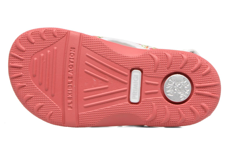 Sandales et nu-pieds Primigi Francesca Multicolore vue haut