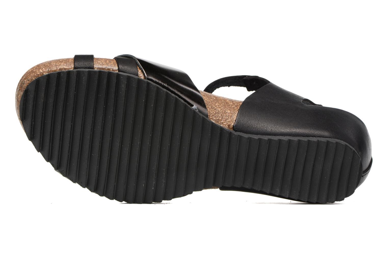 Sandales et nu-pieds Kickers Tokanne Noir vue haut