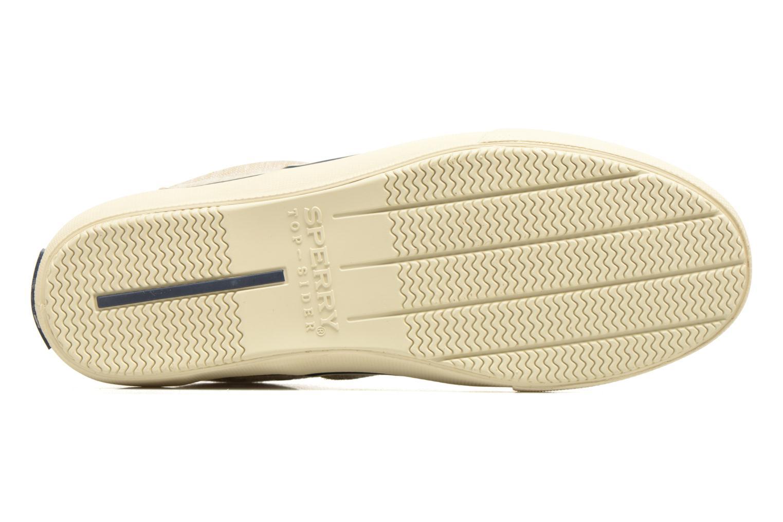 Sneakers Sperry Striper LL Line Beige immagine dall'alto