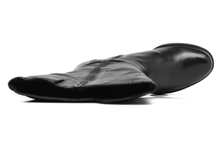 Flandra Noir