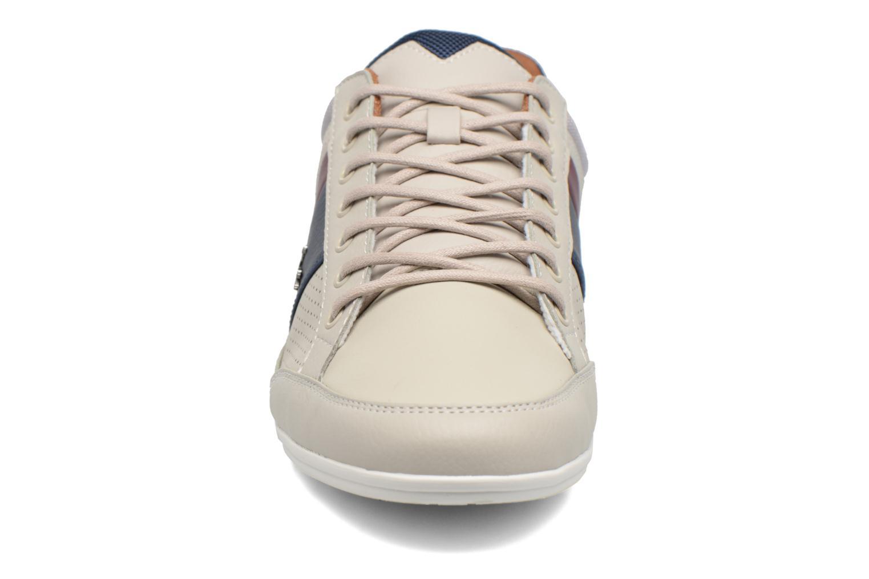 Baskets Lacoste CHAYMON 317 1 Gris vue portées chaussures
