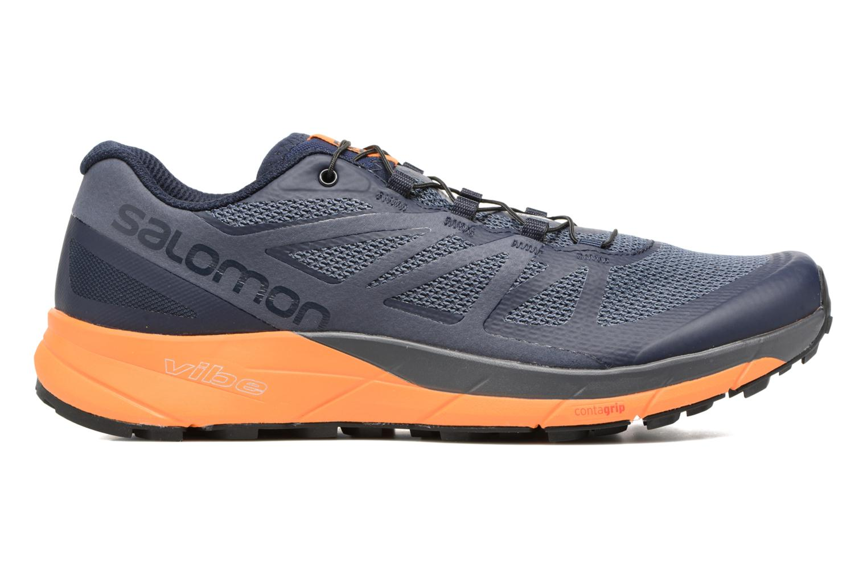 Chaussures de sport Salomon Sense Ride Bleu vue derrière